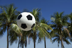 Football Soccer Ball Brazilian Palm Trees Grass Royalty Free Stock Image