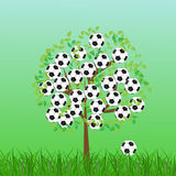 Football or soccer ball on grass Royalty Free Stock Photography