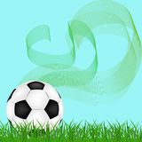 Football or soccer ball on grass Stock Photos