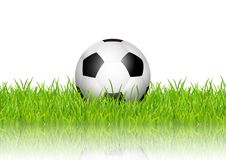 Football / soccer ball in grass on white background. Football / soccer ball in grass on a white background Royalty Free Stock Photo