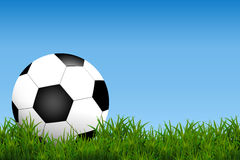 Football, soccer Ball Isolated on Grass field ad blue Background with Space for Your Text Stock Photo