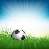 Football or soccer ball nestled in grass Stock Image
