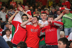Football Soccer Fans. Wales football fans at The Millennium Stadium during the 2010 World Cup Qualifier match between Wales and Russia, September 9, 2009 royalty free stock photos