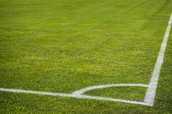 Football soccer field corner with white marks, green grass texture. Stock Photo