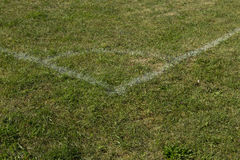 Football soccer field corner with white marks, green grass. Stock Photos