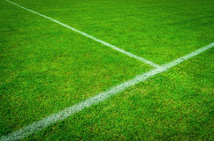 Football (soccer) field. Natural green soccer field with white lines Stock Image