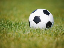 Football soccer grass Stock Images