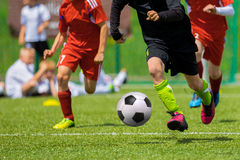 Football soccer match. Football match for children. Training and football soccer tournament Royalty Free Stock Photo