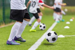 Football soccer training for youth teams. Young footballers Royalty Free Stock Photography