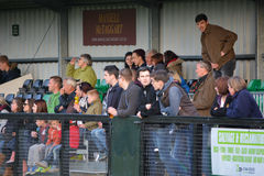Football Spectators in the Stand Royalty Free Stock Photo