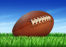 Football Sport. Football ball on a grass field and a blue sky as a professional or college game sport for traditional American and Canadian play Royalty Free Stock Photos