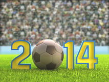 Football 2014 Stadium Royalty Free Stock Image