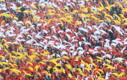 Football supporter Royalty Free Stock Photo
