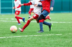 Football teams - boys in red, blue, white uniform play soccer on the green field. boys dribbling. dribbling skills. royalty free stock photos
