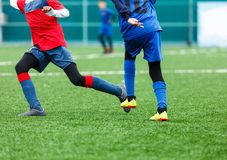 Football training for kids. Boys in blue red sportswear on soccer field. Young footballers dribble and kick ball in game. Training. Active lifestyle, sport royalty free stock image