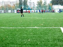 Football training for kids. Boys in blue red sportswear on soccer field. Young footballers dribble and kick ball in game. Training. Active lifestyle, sport royalty free stock images