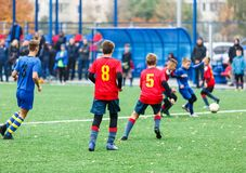 Football training for kids. Boys in blue red sportswear on soccer field. Young footballers dribble and kick ball in game. Training. Active lifestyle, sport stock photography