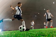 Football training. Team of intercultural boys running throughout football field, one of them kicking the ball Royalty Free Stock Images