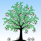 Football tree Royalty Free Stock Photos