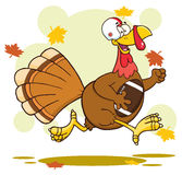 Football Turkey Bird Royalty Free Stock Photography