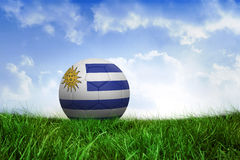 Football in uruguay colours Royalty Free Stock Images