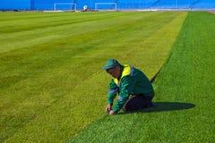 Football. World Championship 2018. Training stadium of the city of Togliatti, Samara region. royalty free stock images