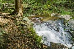 Footbridge и падая заводь воды стоковое фото rf