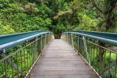 Footbridge металла пешеходный между толстой зеленой листвой стоковое изображение