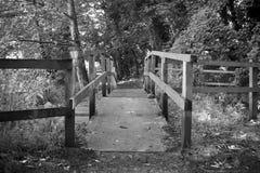 Footbridge над водопадом Стоковые Фото