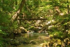 Footbridge над одичалым потоком форели горы Стоковая Фотография