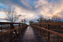 Footbridge после дождя Стоковые Фото