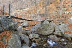 Footbridge приостанавливанный веревочкой Стоковые Изображения