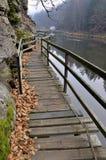 footbridge Obraz Stock