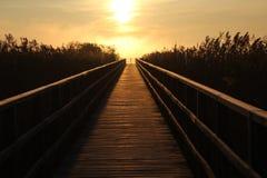 footbridge Zdjęcia Royalty Free