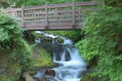 Footbridge. At Wakeena Falls in the Columbia River Gorge Stock Image