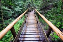 footbridge Zdjęcia Stock
