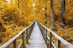 footbridge Fotografia de Stock