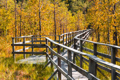 footbridge Foto de Stock Royalty Free