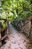Footbridge. The old footbridge in park Stock Images