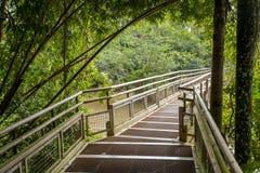 footbridge imagens de stock