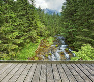 Footbridge across the mountain stream Royalty Free Stock Image