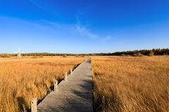 Footbridge across the wetland at autumn Stock Image