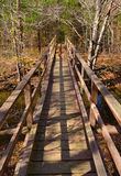Footbridge on the Appalachian Trail Stock Images