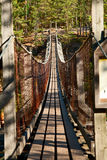 Footbridge bridge Royalty Free Stock Photo