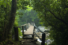 Footbridge, Chimney Tops Trail, GSMNP Royalty Free Stock Images