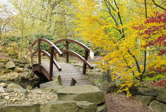 Footbridge and colorful trees. Footbridge and colorful maple trees with yellow and red leaves in ZOO Ostrava, Czech Republic Royalty Free Stock Image