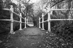 Footbridge. Crossing above the river with white railings Royalty Free Stock Photos