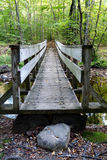 Footbridge in the Forest Royalty Free Stock Images