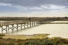 Footbridge heading to Quinta do Lago beach, in Ria Formosa. Algarve Stock Image