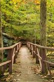 Footbridge Hiker Стоковая Фотография RF